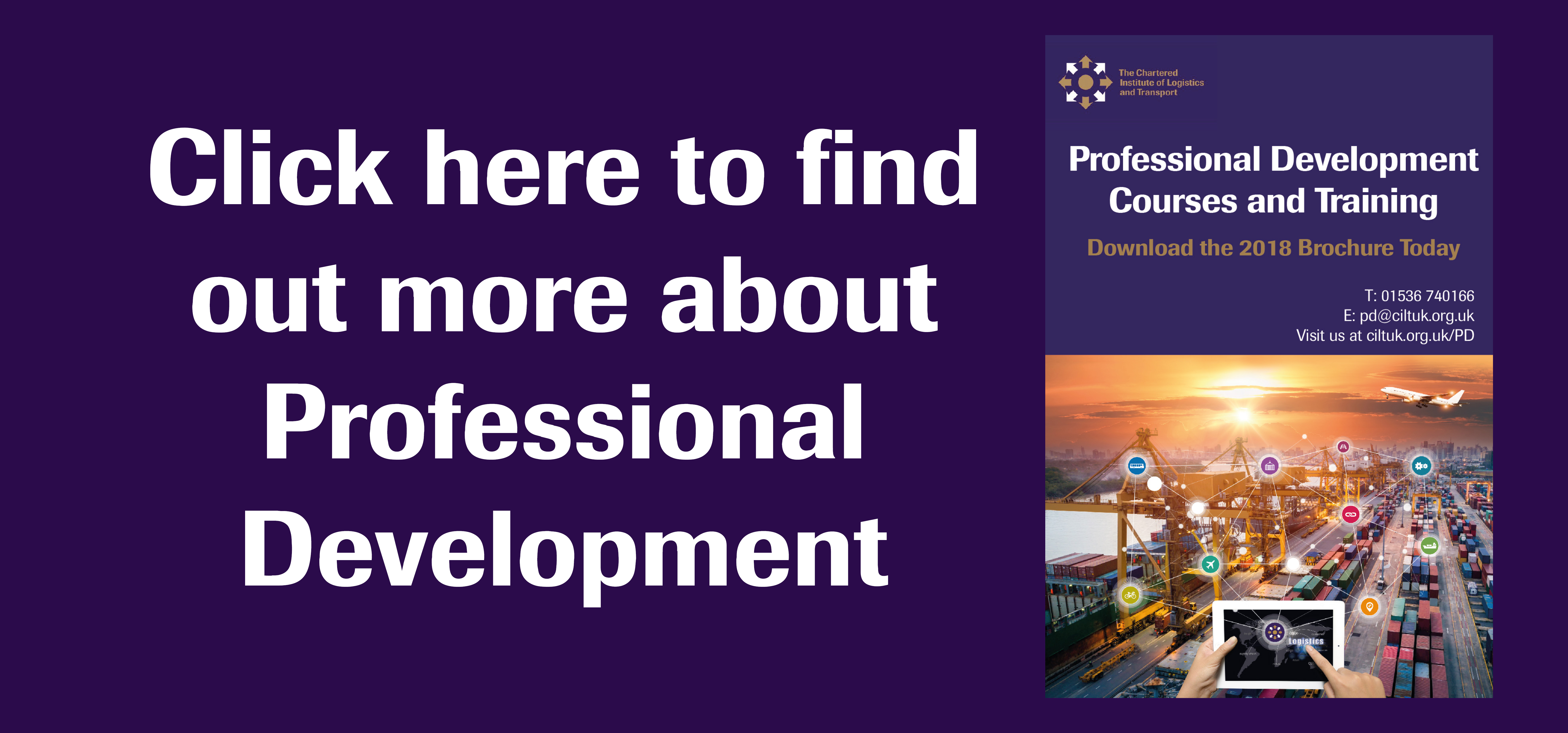 Professional Development Graphic Homepage 2019